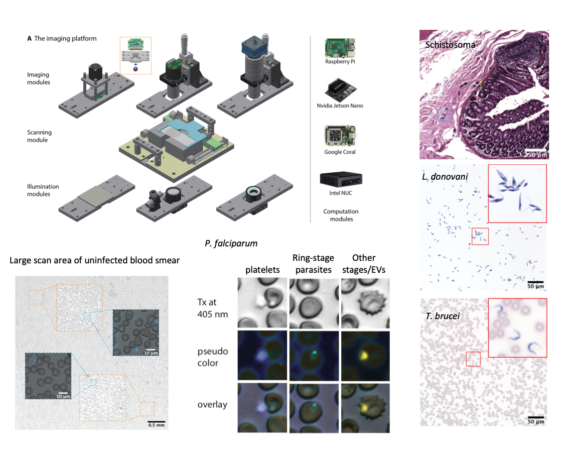 Octopi: Open configurable high-throughput imaging platform for